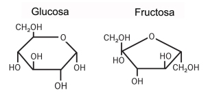 glucosa fructosa