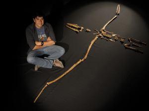 David Rubilar y el Pelagornis chilensis