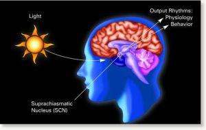 © National Institute of General Medical Sciences